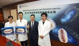 HKBU biologists discover and name new fireworm species in Hong Kong waters