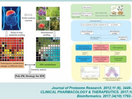"A STRATEGY FOR ""POLYPHARMACOKINETICS"" STUDY OF HERBAL MEDICINES